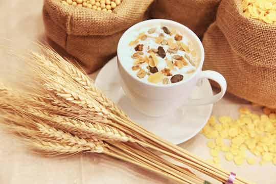 Finger weg von scheinheiligen Getränkekartons & die Frage, ob Pflanzenmilch gesund ist