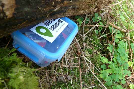 Geocaching mit Kindern - das verbindende Outdoorabenteuer für die ganze Familie