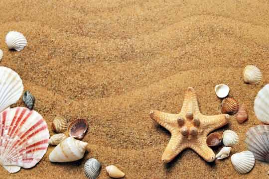 Nur 18 Sommer: So kannst Du die Zeit anhalten & die Familienzeit bewusst genießen