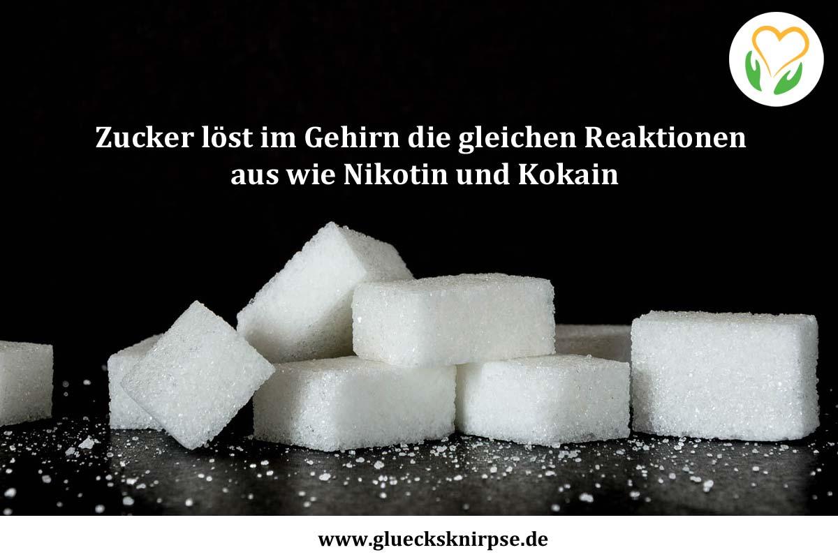Zucker löst im Gehirn die gleichen Reaktionen aus wie Nikotin und Kokain