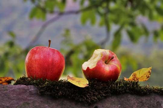 Vitamine & Co: Welche Nahrungsergänzungsmittel sind sinnvoll für Kinder (& Eltern)