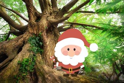 Weihnachtsspecial Onlinekurs mit Kindern wachsen