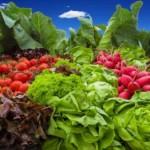 Optimal versorgt: Wichtige Nahrungsergänzungsmittel für Veganer & Vegetarier