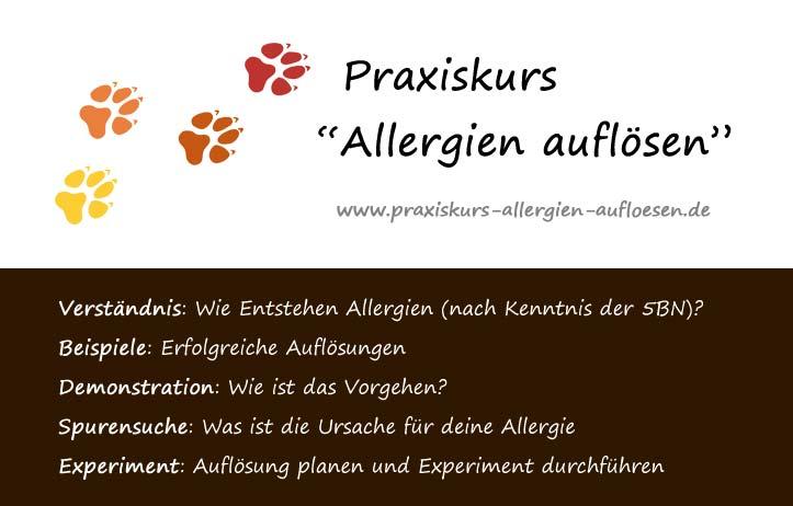 Praxiskurs Allergien auflösen